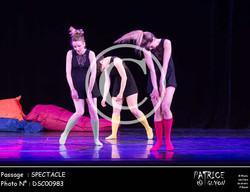 SPECTACLE-DSC00983