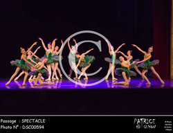 SPECTACLE-DSC00594