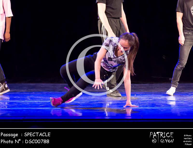SPECTACLE-DSC00788