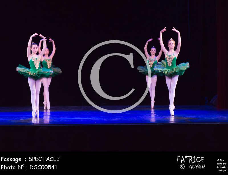 SPECTACLE-DSC00541