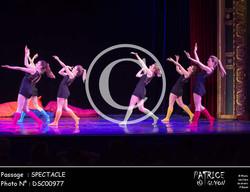 SPECTACLE-DSC00977