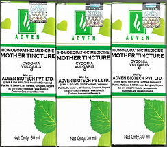 Adven Cydonia Vulgaris Q Pack of 3