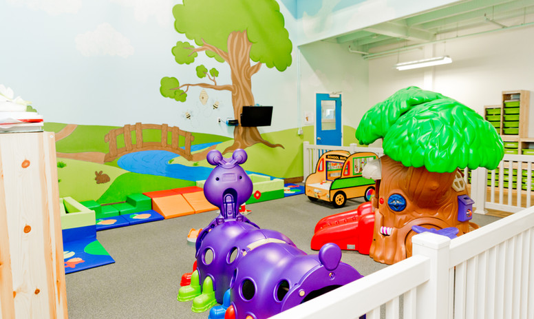 Magic Mountain Toddler Gym