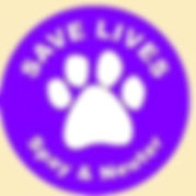 Orange County professional pet sitter