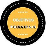 Ícone_objetivos.PNG