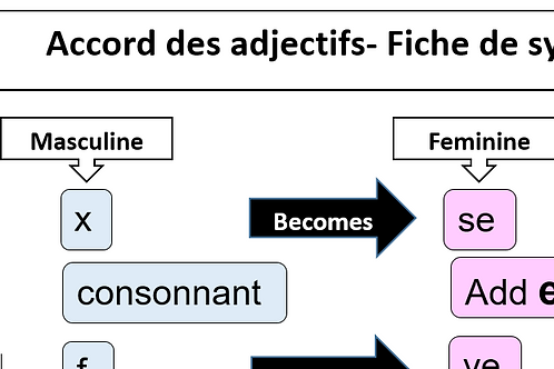 Accord des adjectifs- Fiche de synthese