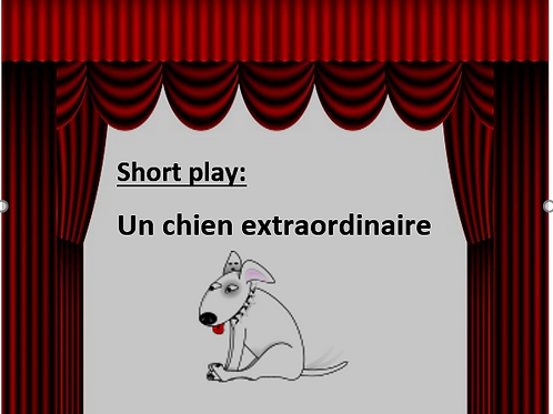 Short play: un chien extraordinaire