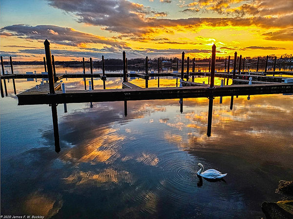 Swan Lake Bristol.jpg
