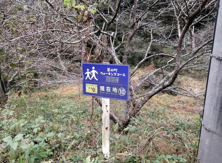 基山登山⑫ 大興禅寺から古屋敷経由コース(11月)編