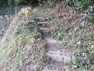 基山登山⑦ キャンプ場から東北門跡経由コース(11月)編