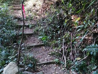 基山登山⑧ 階段コース(11月)編
