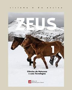 Capas Zeus 2019Prancheta 1 copiar 2.jpg