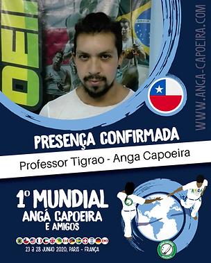 Professor Tigrão.png