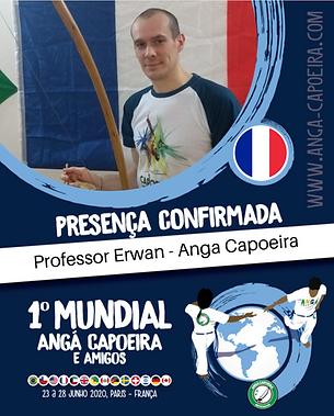 Professor Erwan.png
