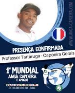 Professor Tartaruga.png