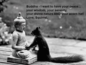Buddha envy