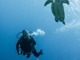 9 cosas que tienes que hacer en Cozumel