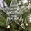 Thumbnail: New Home Christmas Decoration