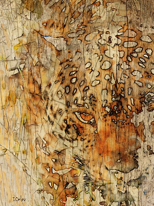 Sand Tiger, Hand Embellished Canvas Giclee