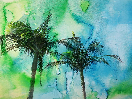 Palm Trees, Hand Embellished Canvas Giclee
