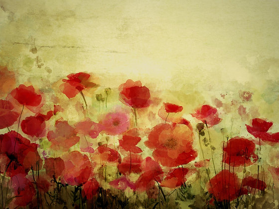 Poppy field Provence land. Hand Embellished Giclee