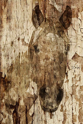 Gold Champagne Horse Embellished Canvas Giclee