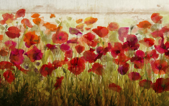 Poppy garden, Hand  Embellished Canvas Giclee