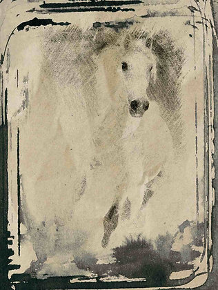 Beautiful horse, Embellished Canvas Giclee