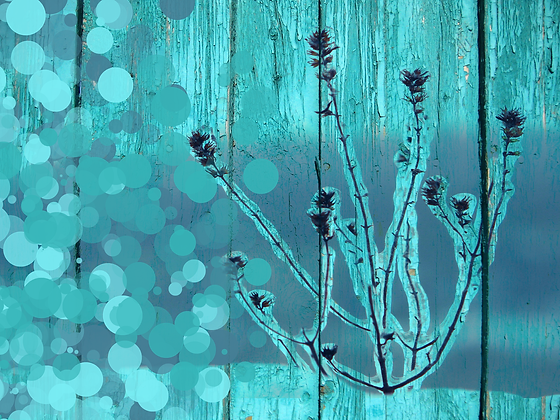 Frozen, Hand Embellished Canvas Giclee
