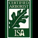 ISA-150x150.png