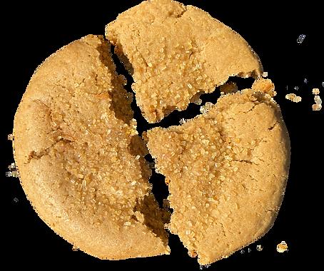 Demerara Sugar Cookie