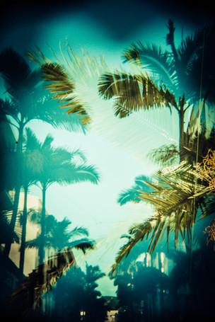 11. Miami Vibe