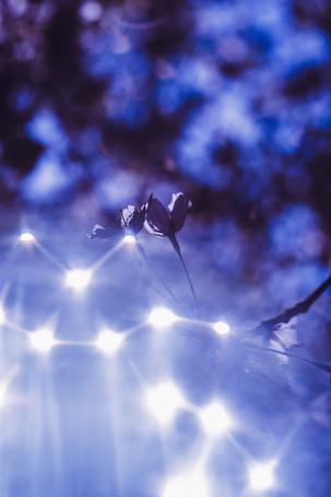 5. Tähtisumu (Nebula)