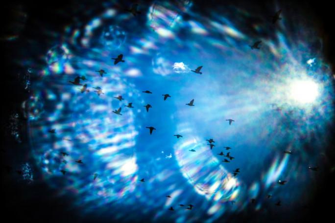 10. Vedenalaiset linnut / Sielun matka (Merbirds / Soul Flight)