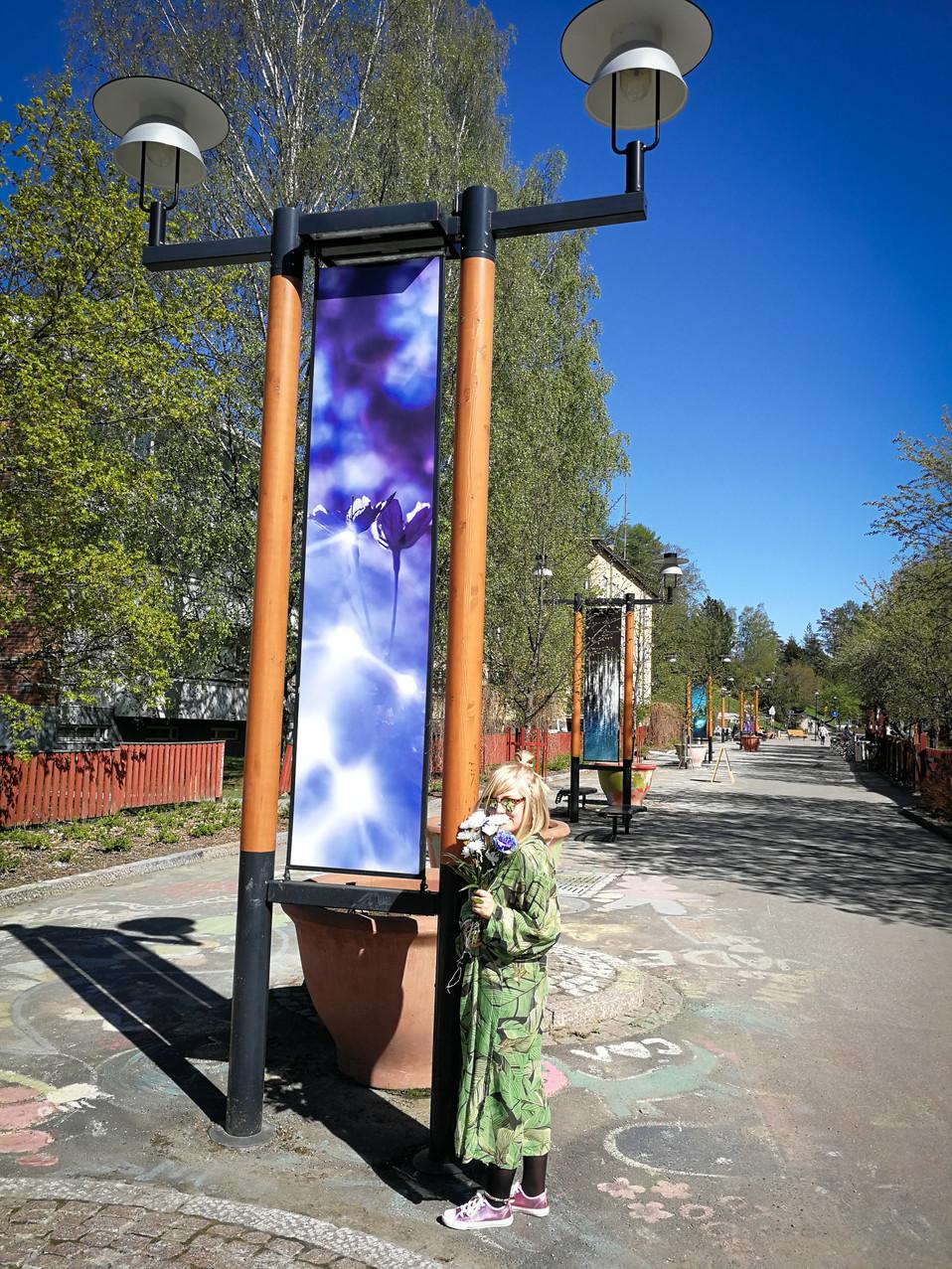 Kosmista valoa ja kosmisia kukkia-2.jpg