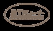 bridgetoturkey-logo.png