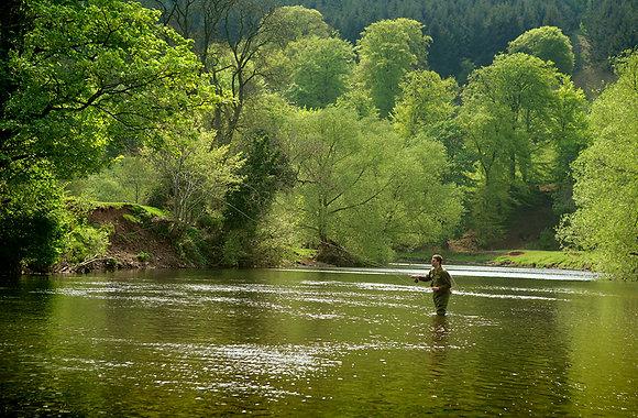 Fishing at Glanusk Estate
