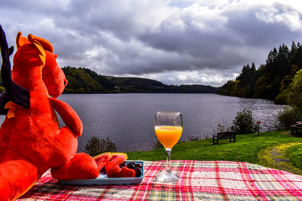 Merry Having Breakfast at Lake Vyrnwy
