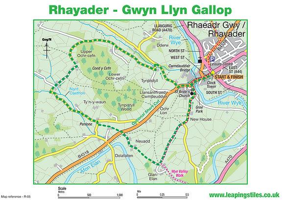 Rhayader: Gwyn Llyn Gallop