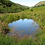 Thumbnail: Radnorshire Wildlife Trust