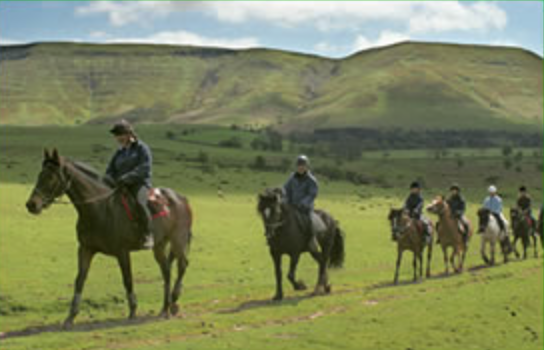 Brecon Farm Holidays