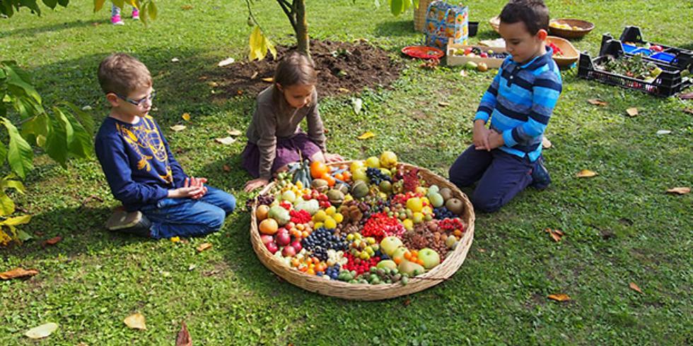 Vortrag: Öffentliche Obstgärten