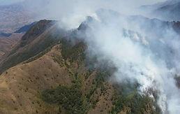 Incendio Quilanga.jpeg