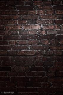 Brick wall backdrop.