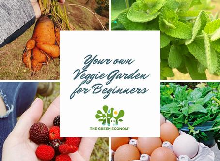 FAST TRACK: Starting your own Organic Veggie Garden 🌱