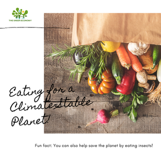 Eating for a Climate-Stable Planet 🌽🥦🥕🍓