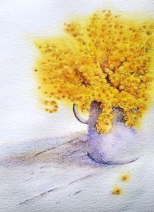 mimosaR.jpg