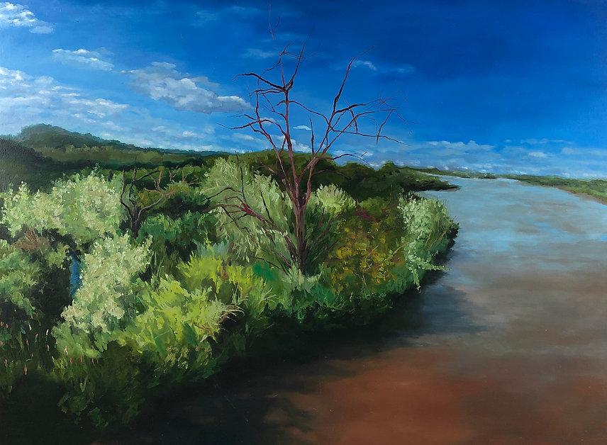 Rio Grand River #2