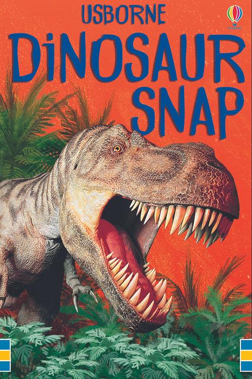 Books - Dinosaur Snap