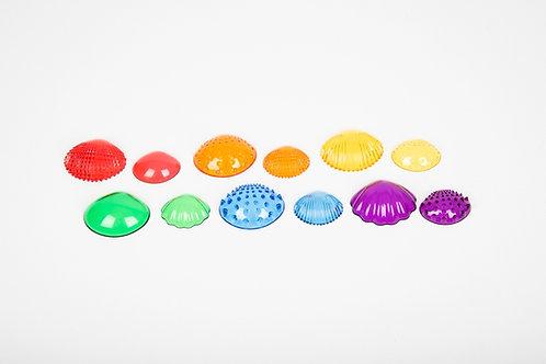Edx Education Transparent Tactile Shells